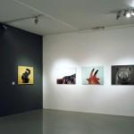 Mihailo Vasiljevic, Animals, Foto-dokumenti 02, Salon Muzeja savremene umetnosti, Belgrade, 2012