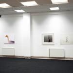 Mihailo Vasiljevic, Animals, Gradska Galerija, Pozega, 2012, 003