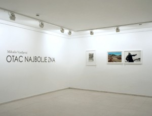 Mihailo Vasiljevic, Father Knows Best, DKSG Gallery, Belgrade, 2011, 003