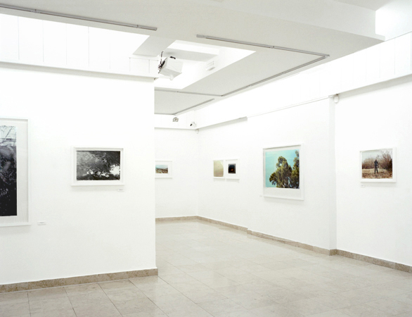 Mihailo Vasiljevic, R. V. Knows Best, Contemporary Gallery, Zrenjanin, 2013 002